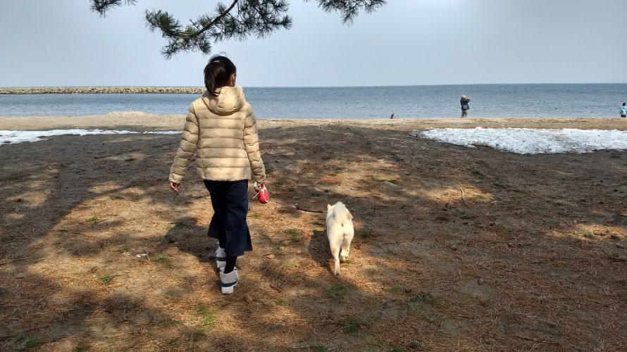 青森県へ初の県外旅行