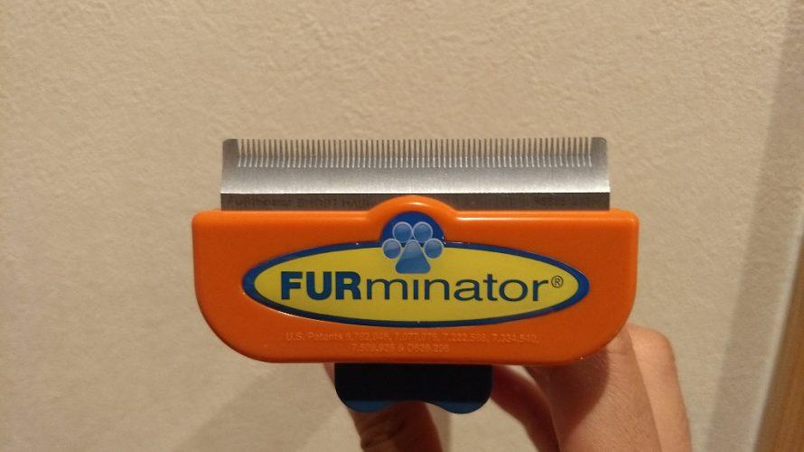 FURminatorで冬毛をごっそり