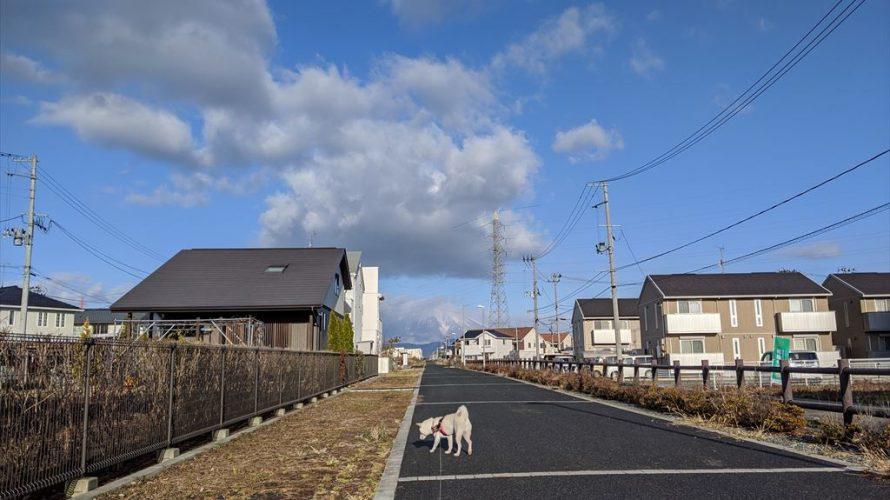 今日のお散歩